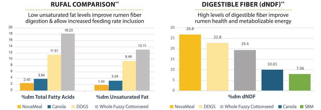 Rufal-and-Digestible-Fiber-Charts