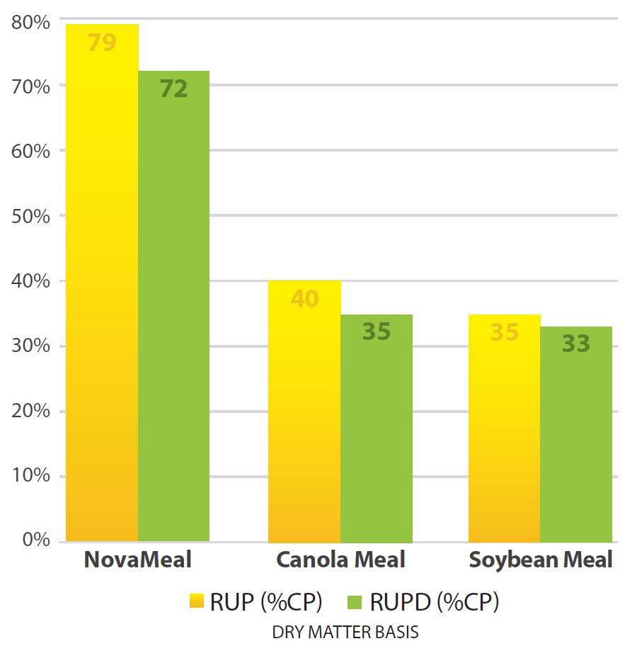 79 RUP Chart